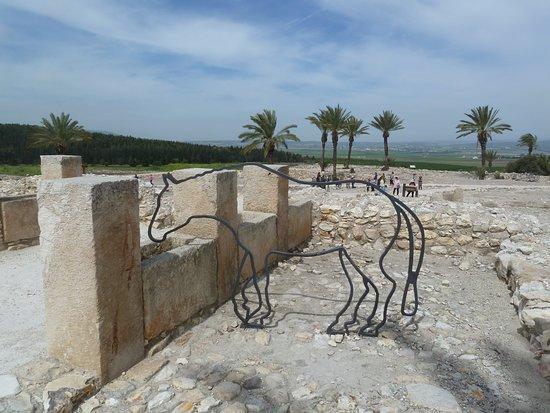 Alte Pferdetränke - Picture of Megiddo National Park, Nazareth ...