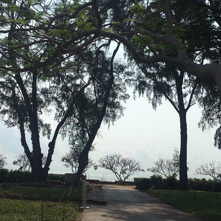 Mrigadayavan Palace : photo3.jpg