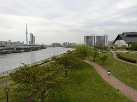 Tokyo Prefecture, Japan: 汐入公園付近