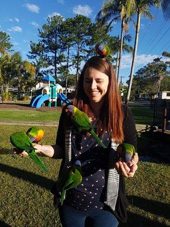 Arrawarra, Αυστραλία: 20170623_151539_large.jpg