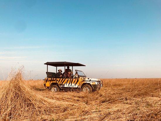 Image result for banni grasslands kutch tripadvisor images