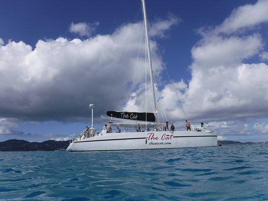 龟湾双体船浮潜和巴克岛航行冒险照片