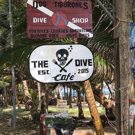 Dos Tiburones Dive Shop照片