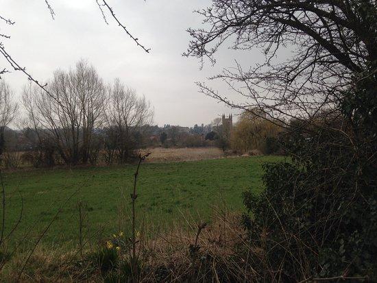 Bishops Meadow