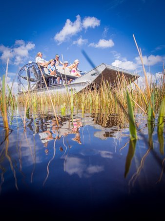 Everglades National Park Airboat Tour Picture Of Airboat