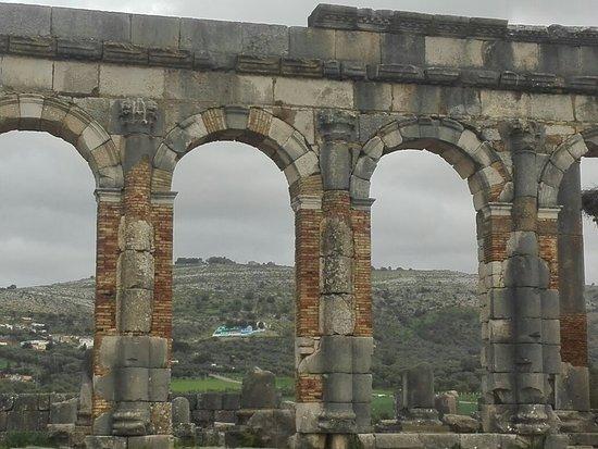 Barouma Tours