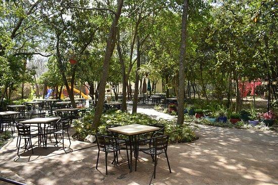 Jardín comedor - Picture of La Piazzetta, Santiago - TripAdvisor