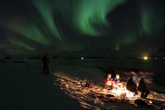 Krokelvdalen, Norway: Aurora Borealis