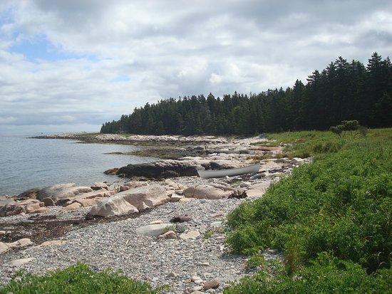 Остров Бейкер, Мэн: Baker Island Shoreline