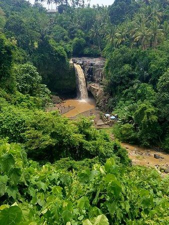 Γκιανγιάρ, Ινδονησία: 20171107_114334_large.jpg