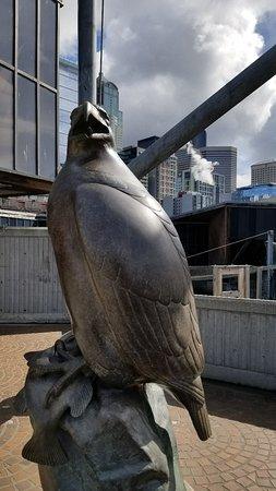 Seattle Aquarium: 20180324_120409_large.jpg