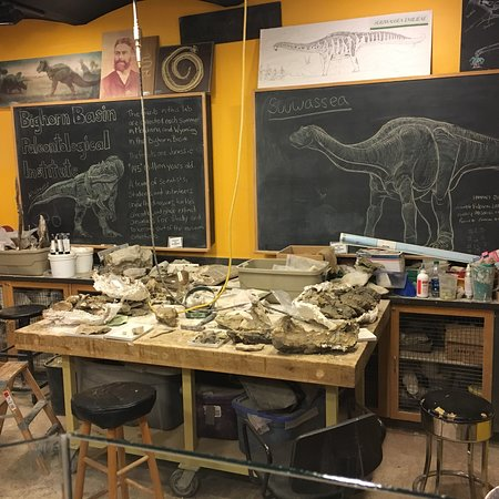 Academy of Natural Sciences of Drexel University: photo2.jpg