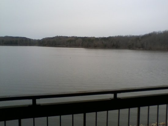Rogersville, AL: View of Wheeler Lake from my room at the lodge.