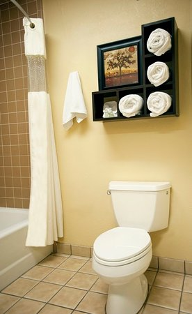 Best Western Plus Forest Park Inn: Guest room amenity