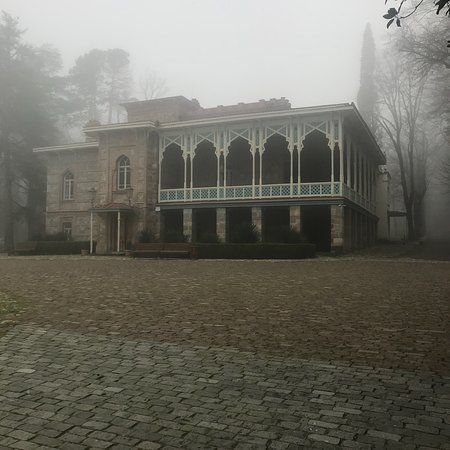 Tsinandali Palace: photo1.jpg