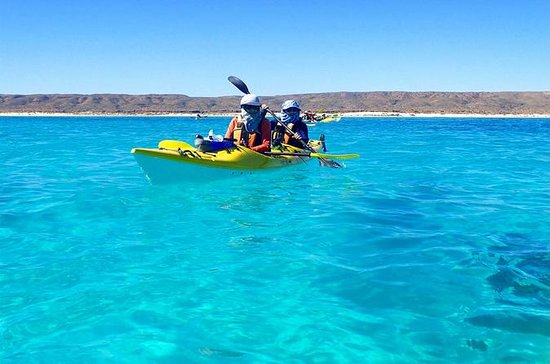 5-Day Ningaloo Reef Kayaking ...