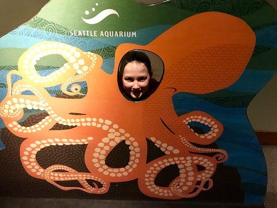At the Seattle Aquarium