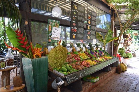 Tropical Fruit World: The big Jackfruit