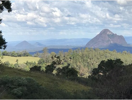 Glass House Mountains, Australien: View of the of mountians at the Big Barrel Winery in Maleny