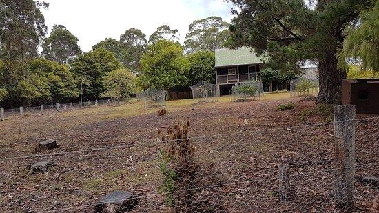 Eden, Australie : 20180325_105305_large.jpg