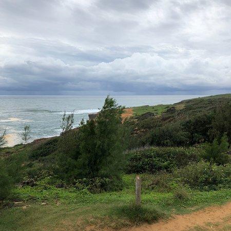 Kauai Nature Tours Reviews