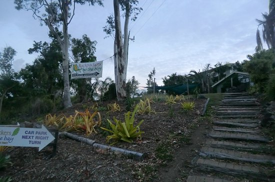 Backpackers by the Bay: Way to Hostel