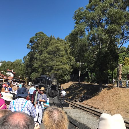 Puffing Billy Railway: photo0.jpg