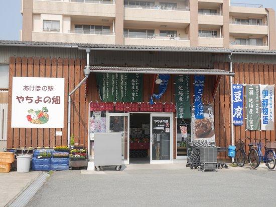 Yachiyo no Hatake