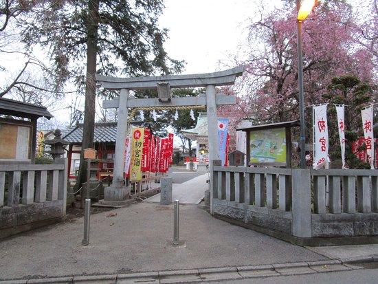 Shiraoka, اليابان: 鳥居と桜
