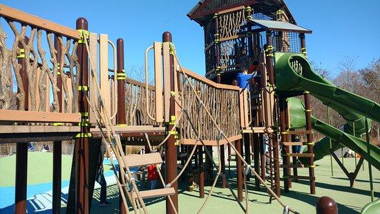 Greenbriar Local Park