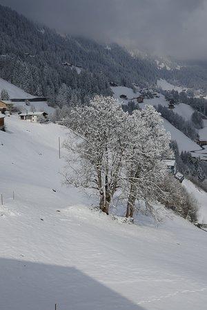 Ferienhotel Fernblick: Schnee und Nebel