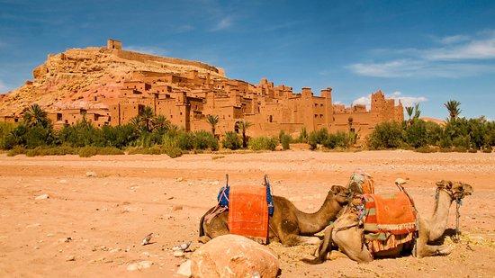 Ausflug Reisen Marokko