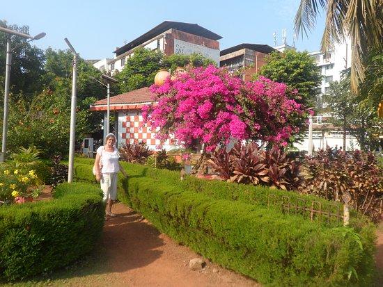 Margao, Indie: Приятно гулять по аллеям парка