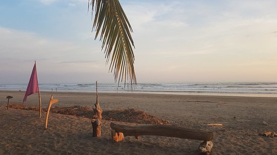 Playa San Miguel, Costa Rica: 20180324_173912_large.jpg