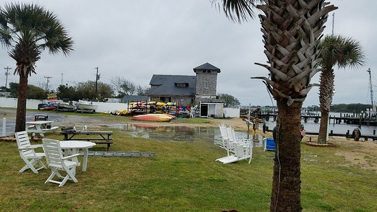 Cedar Point, NC: 20180325_114415_large.jpg
