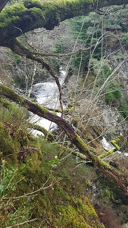 Conwy Falls: 20180323_122415_large.jpg