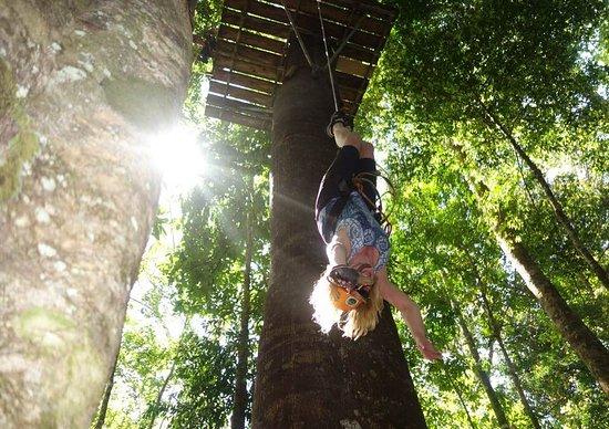 Ballena, Κόστα Ρίκα: Dropping down upside down!