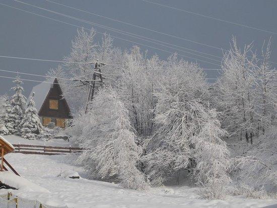 Miedzybrodzie Zywieckie, Polónia: Żar zimą - foto 1