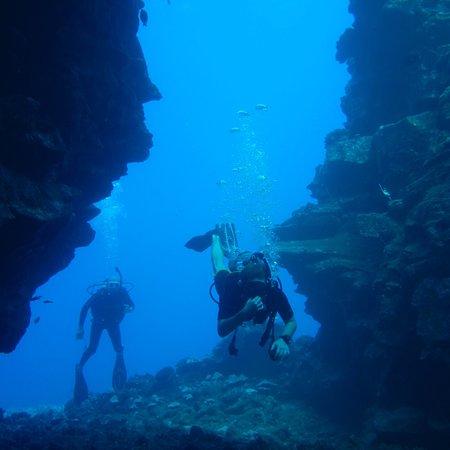 Hawaiian Rafting Adventures: photo3.jpg
