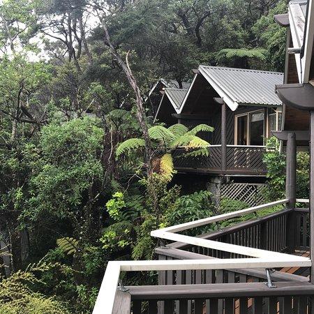 Pauanui, Nueva Zelanda: photo4.jpg