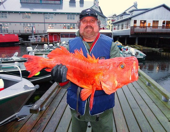 Ketchikan At The Baranof Fishing Excursions Picture Of Baranof Fishing Excursions Ketchikan