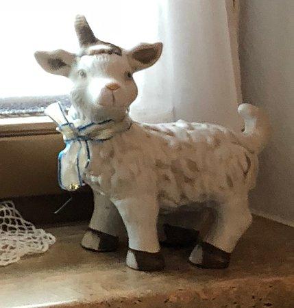 Hainzenberg, ออสเตรีย: sheep