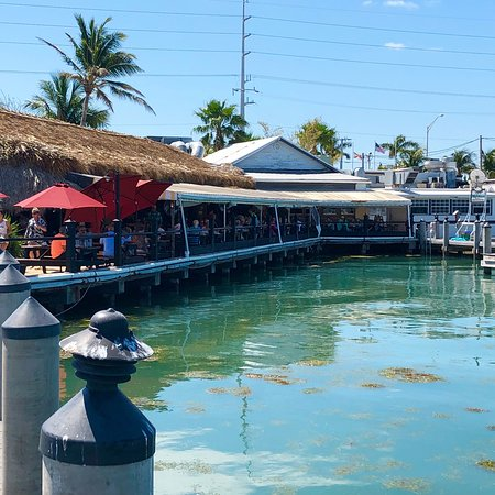 Island fish company marathon restaurantanmeldelser for Island fish company