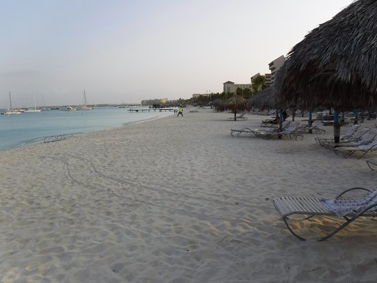 Hilton Aruba Caribbean Resort View From The Beach Sign Up To