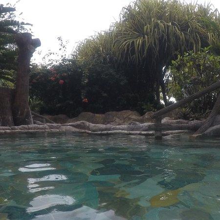 Los Lagos Hotel Spa & Resort: photo1.jpg