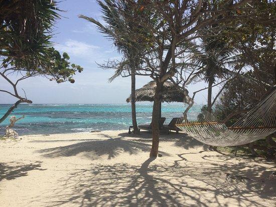 Petit St.Vincent: Beach Villa