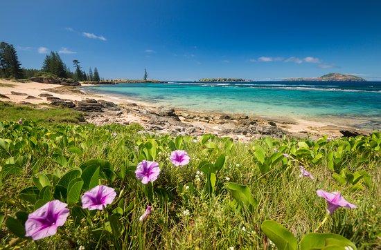 Kingston, أستراليا: Slaughter Bay