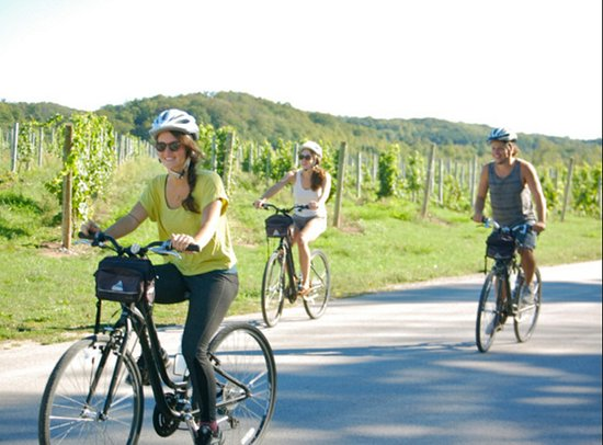 Comfort Inn Traverse City: Visit one of the many area wineries.