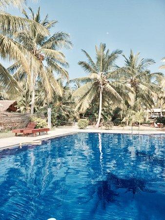 The Coconut Garden Hotel & Restaurant (Tissamaharama, Sri Lanka) - Hotel - anmeldelser ...