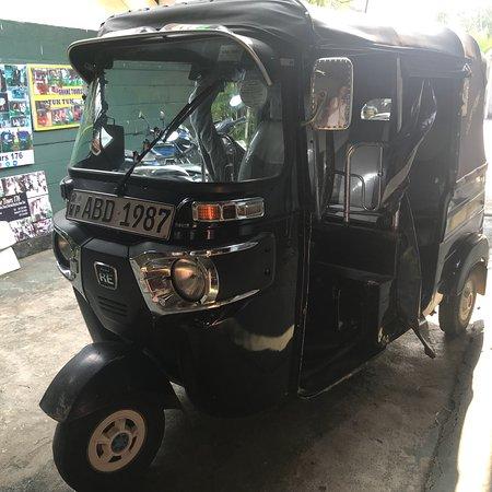 Shane Tours  Negombo Sri Lanka Trip Advisor